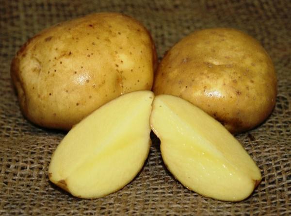 применение сока картофеля