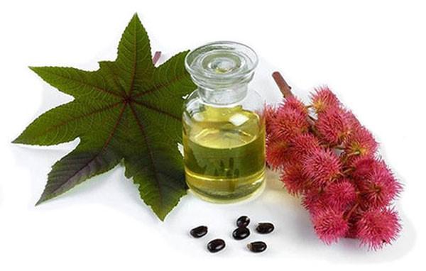касторовое масло, получают из семян клещевины