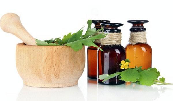 применение настойки из растения
