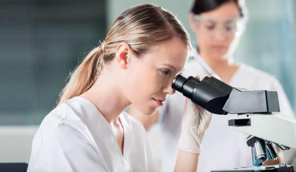 анализ на вирус папилломы человека кровь мазок