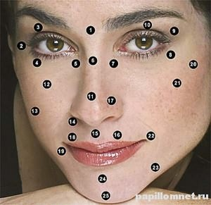 Фото лица девушки с зонами значения родинок