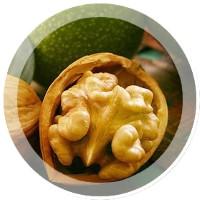 Крем из грецких орехов