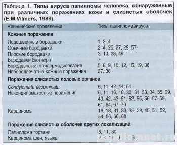 Таблица показывающая все типы ВПЧ