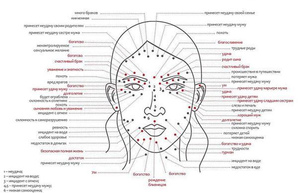 схема расположения невусов у женщин